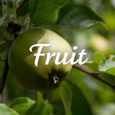 Goeie Kost fruit producten